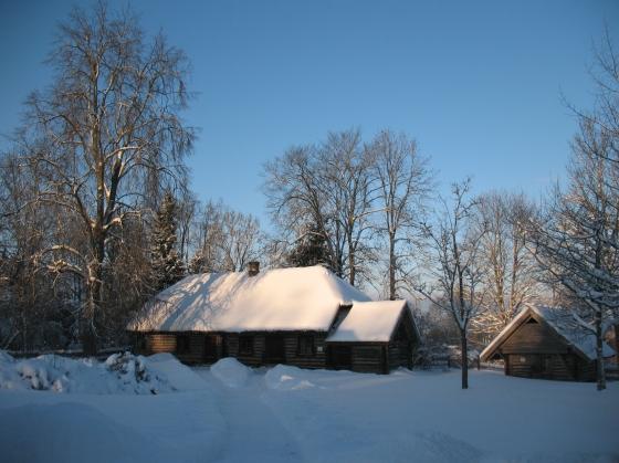 Braki ziemā
